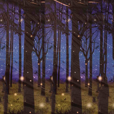 Picture of Vacation Bible School (VBS) FireflyForest Plastic Backdrop