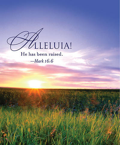 Alleluia! Easter Sunrise Bulletin 2013, Large (Package of 50)