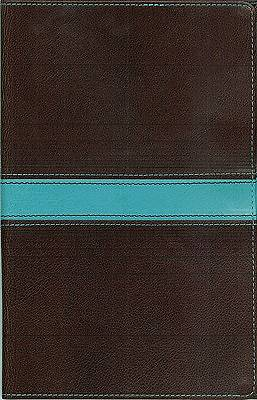 Mens Devotional Compact Bible New International Version