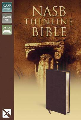 Picture of Thinline Bible