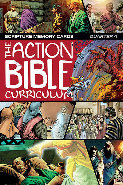 The Action Bible Scripture Memory Cards NIV Winter