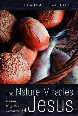 Picture of The Nature Miracles of Jesus