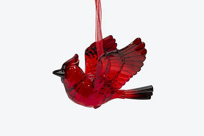 Picture of Acrylic Cardinal Ornament