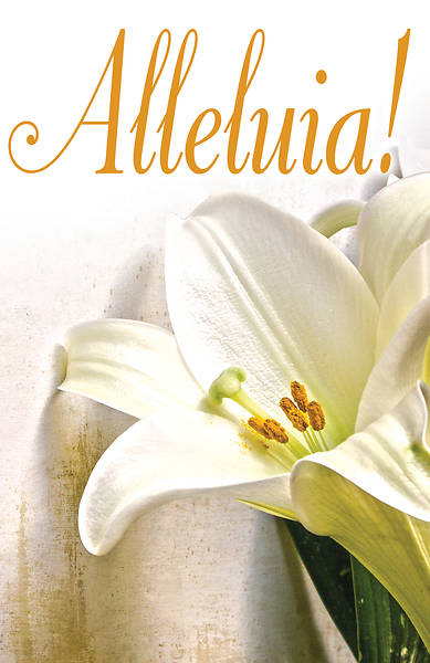 Picture of Alleluia! Easter Lilies Bulletin (Pkg of 50)