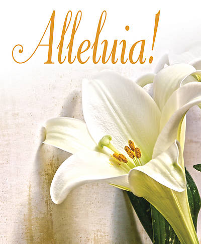 Picture of Alleluia! Easter Lilies Bulletin, Large (Pkg of 50)