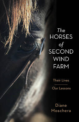 Picture of The Horses of Second Wind Farm