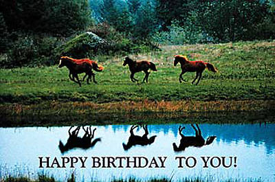 Birthday Postcard (Package of 25)