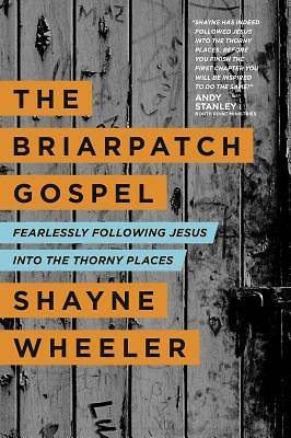 The Briarpatch Gospel [ePub Ebook]