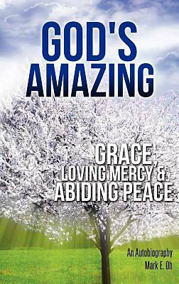 Picture of God's Amazing Grace, Loving Mercy & Abiding Peace
