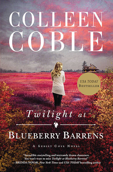 Picture of Twilight at Blueberry Barrens
