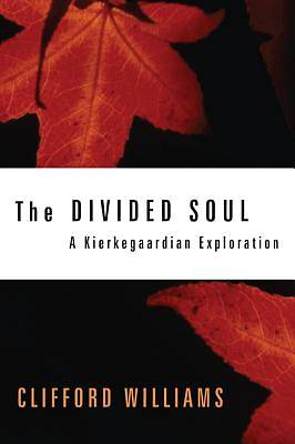 Picture of The Divided Soul