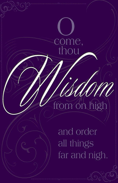 Wisdom Advent Hymn Bulletin (Pkg of 50)