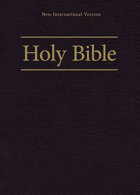 NIV Worship Bible