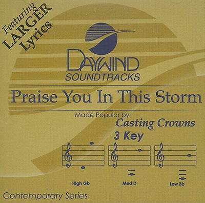 Picture of Praise You in the Storm