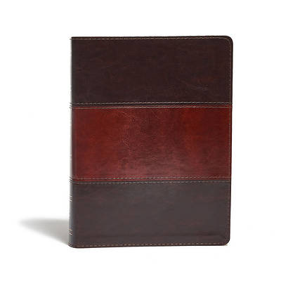 Picture of Study Bible-KJV