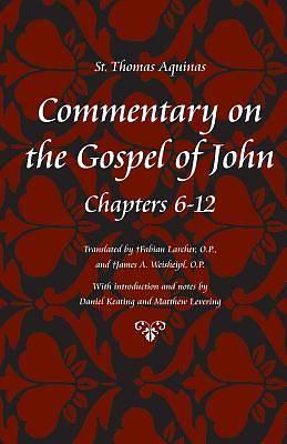 Commentary on the Gospel of John, Books 6-10