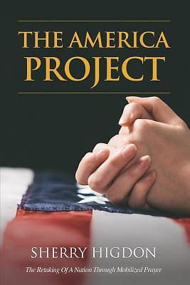 Picture of The America Project