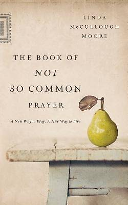 Picture of The Book of Not So Common Prayer