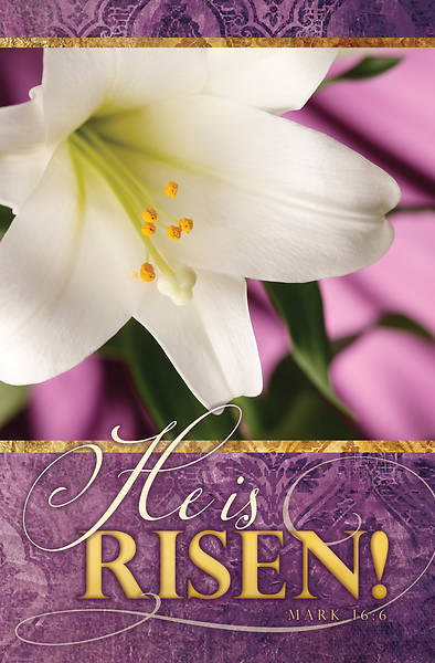 Picture of He is Risen! Easter Lily Regular Size Bulletin