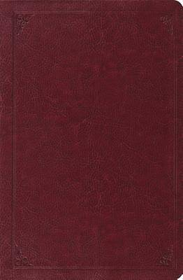 ESV Verse-By-Verse Reference Bible (Trutone, Burgundy, Frame Design)