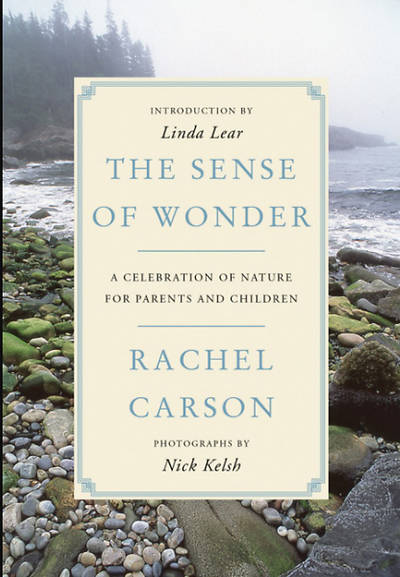Picture of The Sense of Wonder