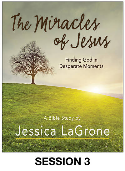 Picture of The Miracles of Jesus - Women's Bible Study Streaming Video Session 3