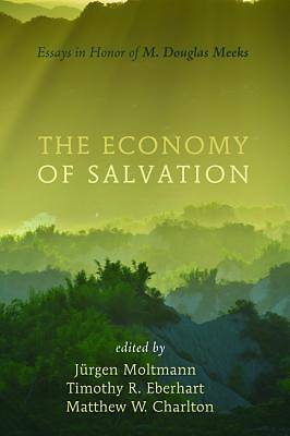 Picture of The Economy of Salvation