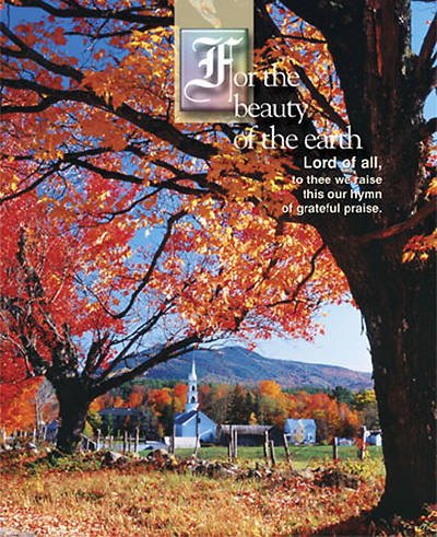 Picture of Fall For the Beauty of the Earth Bulletin 2007, Large (Package of 50)