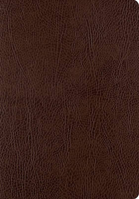 ESV Single Column Journaling Bible, Large Print (Mocha)