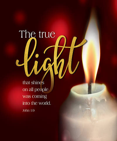 Picture of The True Light Candlelighting Christmas Bulletin, Large (Pkg of 50)