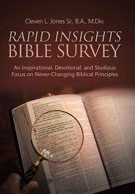Rapid Insights Bible Survey