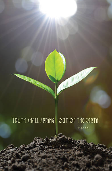Picture of Truth Spring General Regular Size Bulletin