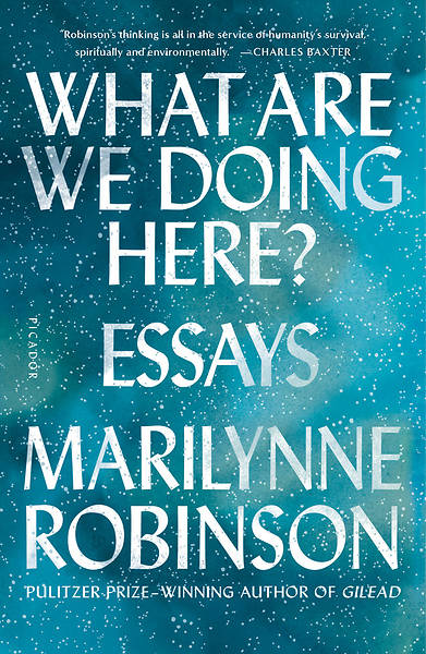 Picture of What Are We Doing Here?: Essays