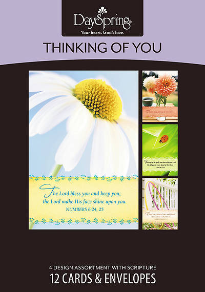 Bright Thoughts - Thinking of You Boxed Cards - Box of 12