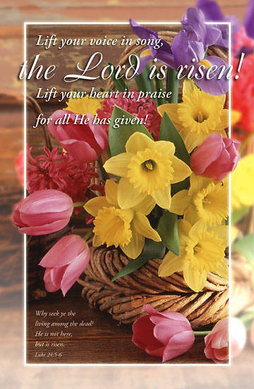 Picture of Lord is Risen! Bulletin, Regular (Package of 100)