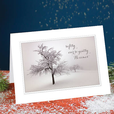 Ever So Gently He Comes Boxed Christmas Cards - Box of 25