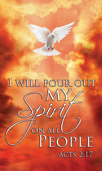 Acts 2:17 Pentecost Banner with Dove and Flames 3x5