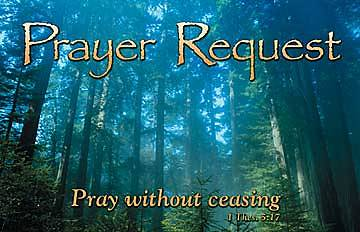 Tarjetas Prayer Requests (paquete de 25)