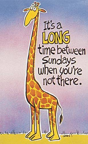 Picture of Giraffe Absentee Postcard - Pack of 25
