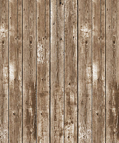 Picture of Vacation Bible School (VBS) 2020 Weathered Wood Plastic Backdrop