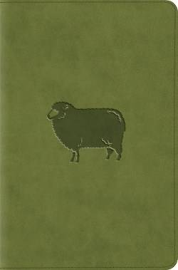 Picture of ESV Compact Bible (Trutone, Green Pastures)