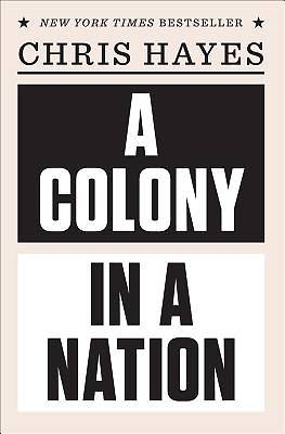 Picture of A Colony in a Nation