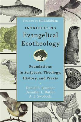Introducing Evangelical Ecotheology [ePub Ebook]