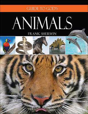 Picture of Guide to God's Animals