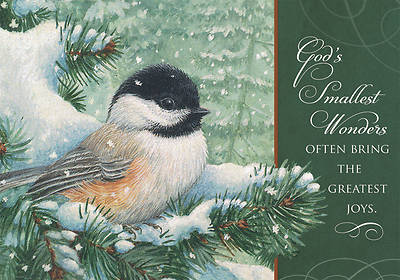 Gods Smallest Wonders Christmas Boxed Cards
