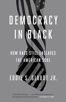 Picture of Democracy in Black