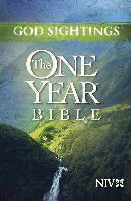 God Sightings: The One Year Bible New International Version