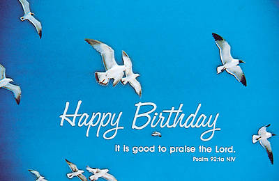 Happy Birthday Gulls Postcard (Package of 25)