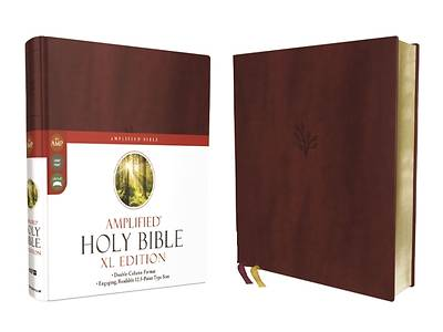Picture of Amplified Holy Bible, XL Edition, Leathersoft, Burgundy