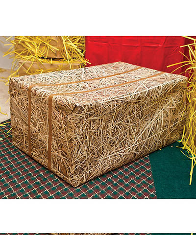 Group VBS 2013 Weekend HayDay Hay Print Wrapping Paper